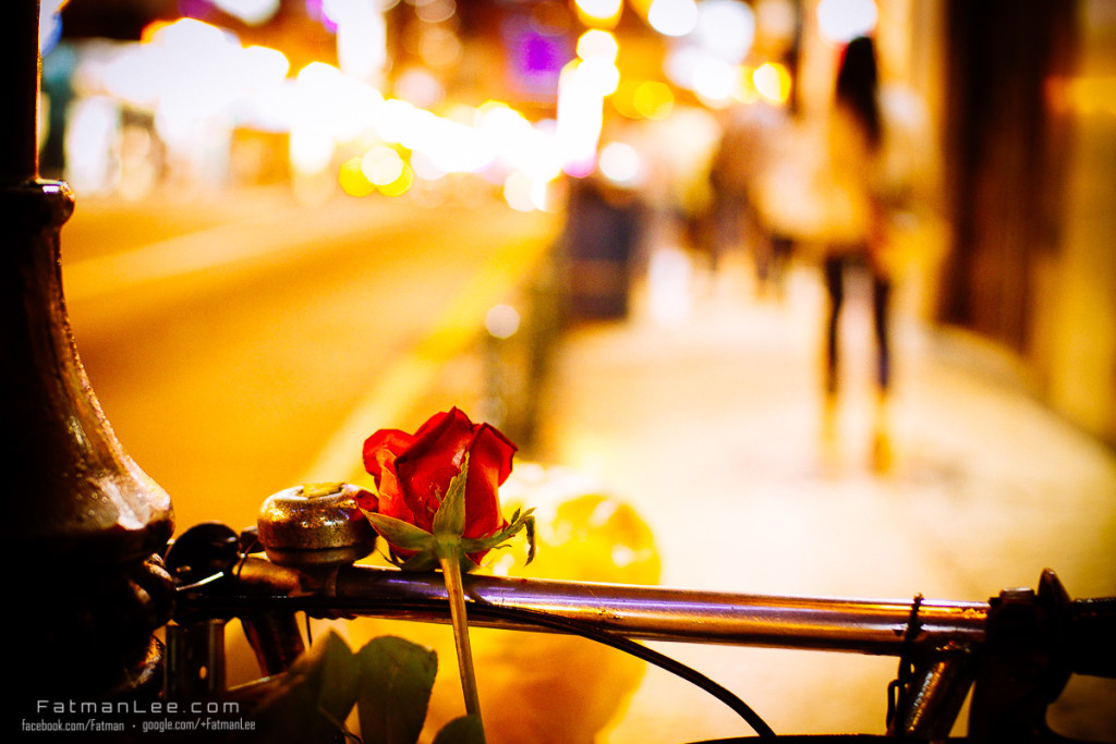 Rose on bike